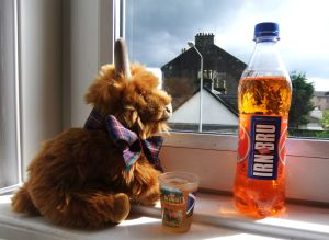 Sunshine, Irn Bru and people watching are the perfect way to unwind